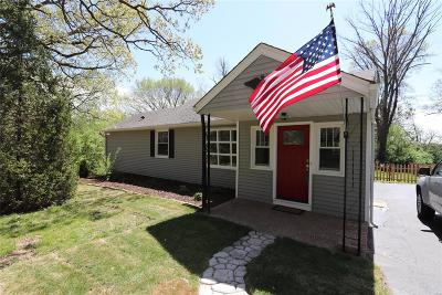 St Louis County Single Family Home For Sale: 10800 Lacklink Road