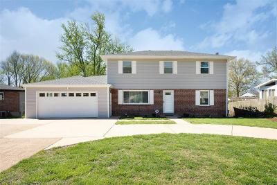St Louis County Single Family Home For Sale: 10340 Concord School Road