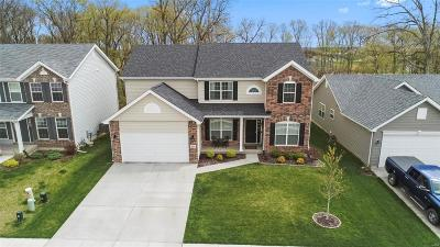 O'Fallon Single Family Home For Sale: 464 Pleasant Breeze Drive
