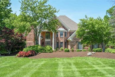 Dardenne Prairie, Defiance, Lake St Louis, O'fallon, St Charles, Wentzville, Chesterfield, Wildwood Single Family Home For Sale: 6 Kingspointe Lake Ct