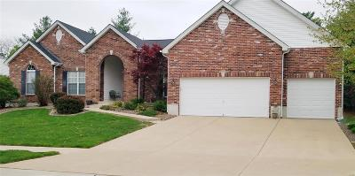 St Charles Single Family Home For Sale: 4067 Jacobs Landing