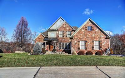 St Louis County Single Family Home For Sale: 12563 Grandview Forest Drive