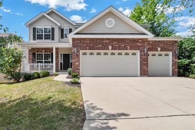 Ballwin Single Family Home For Sale: 1259 Arbor Summit Drive
