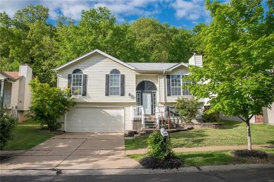 Ballwin Single Family Home For Sale: 441 Elm Crossing Court