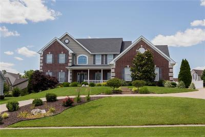 Single Family Home For Sale: 4979 Ambs