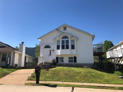 Valley Park Single Family Home For Sale: 145 Glenbarr Court
