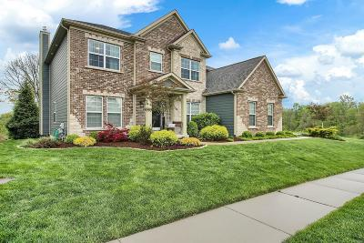 Chesterfield Single Family Home For Sale: 15335 Squires Way Drive