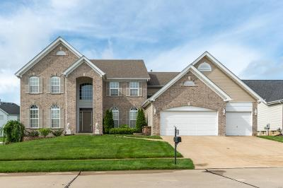 Florissant Single Family Home Active Under Contract: 1210 Hermans Lake