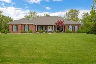 O'Fallon Single Family Home For Sale: 1649 Summit Estates Drive
