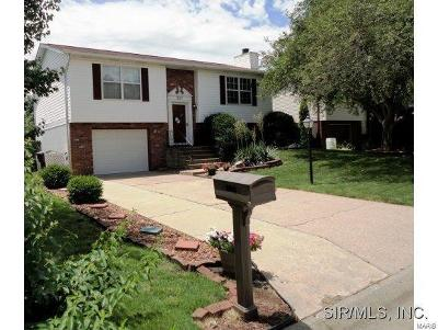 Single Family Home For Sale: 2112 Tampico Drive