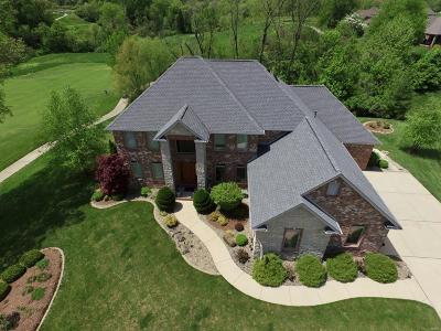Caseyville Single Family Home For Sale: 213 Forest Oaks Drive
