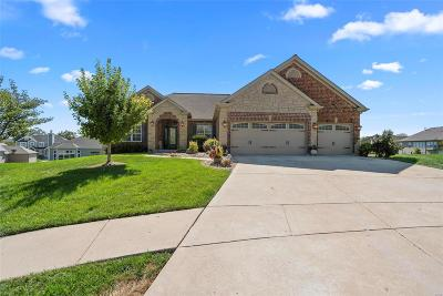 Wentzville Single Family Home For Sale: 14 Swope Park Court
