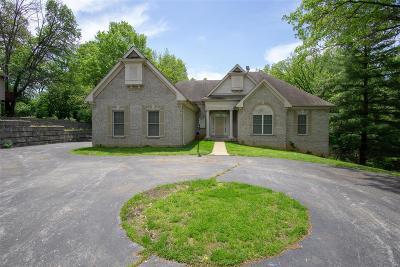 Single Family Home For Sale: 574 West Monroe Avenue