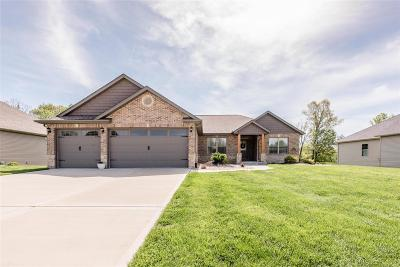 Belleville, Collinsville, Edwardsville, Glen Carbon, Highland, O Fallon, St Jacob, Swansea, Troy, Caseyville, Columbia, Fairview Heights, Lebanon, Mascoutah, Millstadt, New Baden, Shiloh, O'fallon Single Family Home For Sale: 8375 Mill Hill Lane