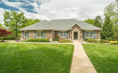 Single Family Home Active Under Contract: 12481 Alswell Lane