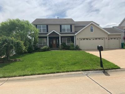 St Charles County Single Family Home Active Under Contract: 976 Lafayette Landing
