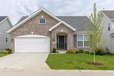 Single Family Home For Sale: 529 Winding Bluffs