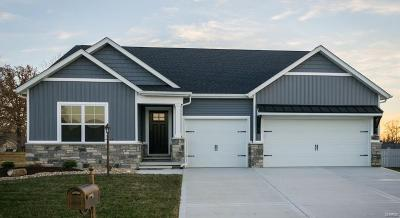 Edwardsville New Construction For Sale: 7346 Providence Dr.