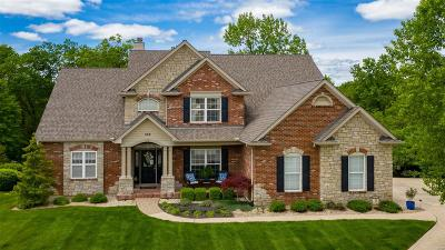 Wentzville Single Family Home For Sale: 552 Elm Creek Drive