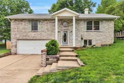 Columbia Single Family Home For Sale: 964 Forest View Drive