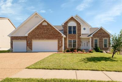 Wentzville MO Single Family Home For Sale: $398,900
