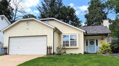 Valley Park Single Family Home Active Under Contract: 161 Wynstay Avenue