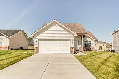 Caseyville Single Family Home For Sale: 7910 Laurel Flats Drive
