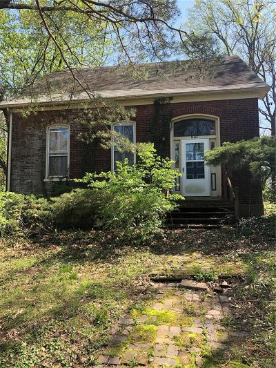 Belleville Single Family Home For Sale: 904 West D Street
