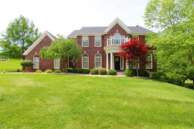 St Louis County Single Family Home For Sale: 1562 Wildhorse Parkway