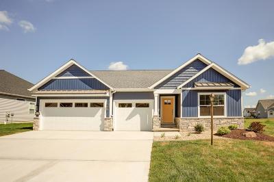 Glen Carbon New Construction For Sale: 7113 Augusta