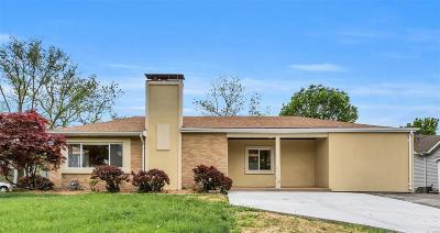 Single Family Home For Sale: 4610 Ringer Road