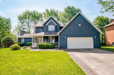 Swansea Single Family Home Active Under Contract: 308 Lake Lorraine Drive