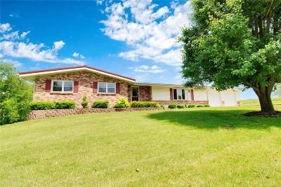 Farmington Single Family Home For Sale: 2518 Highway H