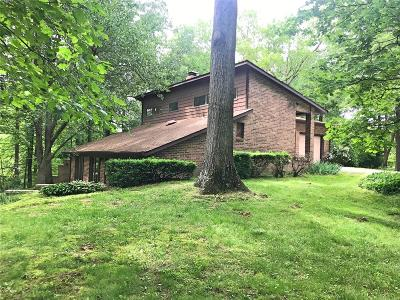 Single Family Home For Sale: 4 Frieda