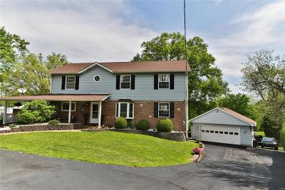 Single Family Home For Sale: 4771 Theiss Road