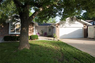St Charles Single Family Home For Sale: 53 Treebeard Circle