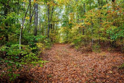 Park Hills Farm For Sale: 27 Ritter Creek Lane