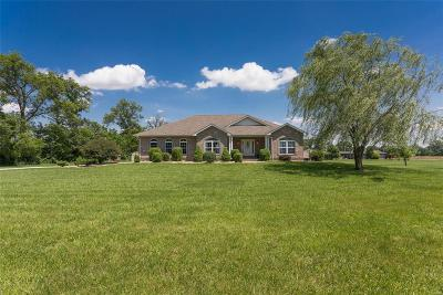 Troy IL Single Family Home For Sale: $369,900
