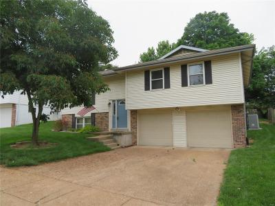 St Louis MO Single Family Home For Sale: $179,900