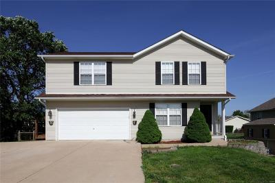 Lincoln County, Warren County Single Family Home Active Under Contract: 20 Hamlet Drive