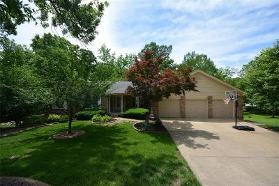 Lake St Louis Single Family Home For Sale: 19 Laurel Oaks Court