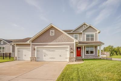 O'fallon Single Family Home For Sale: 541 Frost Court