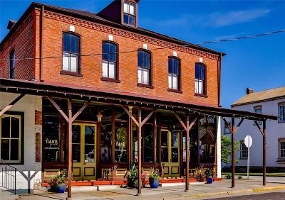 Gasconade County Commercial For Sale: 115 Schiller Street #113 1/2