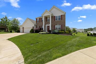 Wentzville Single Family Home For Sale: 37 Bear Cub Court