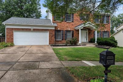 St Louis County Single Family Home For Sale: 16437 Audubon Village