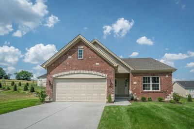 Franklin County Single Family Home For Sale: 2997 Halls Green Drive