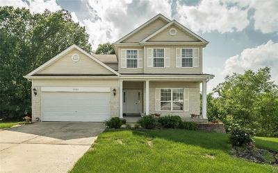 Single Family Home For Sale: 2905 Elderwood Circle