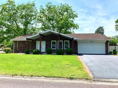 Millstadt Single Family Home For Sale: 11 Lexington Drive