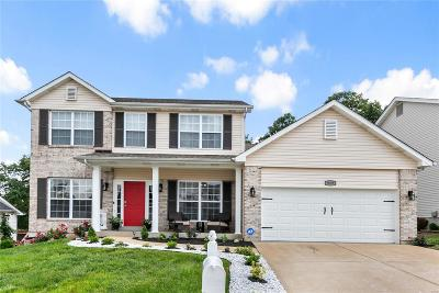 Single Family Home Active Under Contract: 919 Shadow Pine Drive