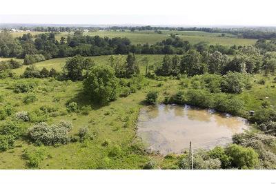Bonne Terre Farm For Sale: 4700 Hazel Run Road